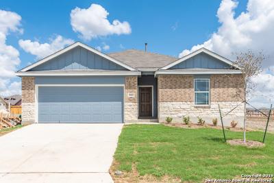 San Antonio TX Single Family Home New: $244,341