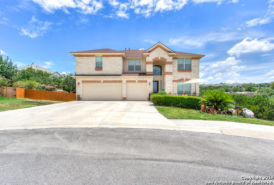 San Antonio Single Family Home New: 822 Synergy Ln