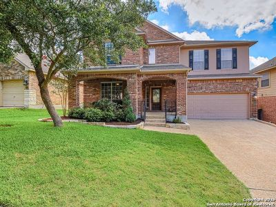 San Antonio Single Family Home New: 23542 Enchanted Fall