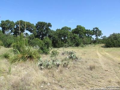 Hondo Farm & Ranch For Sale: 366 Private Road 2538