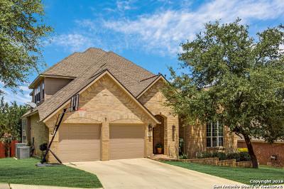 Helotes Single Family Home For Sale: 8715 Rancho De Taos