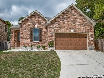 San Marcos Single Family Home For Sale: 717 Cavallo Springs Cove