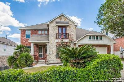 Helotes Single Family Home For Sale: 10606 Wind Walker