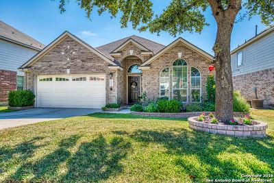 Single Family Home Back on Market: 21007 Encino Dawn
