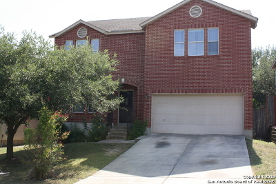 Stone Oak Single Family Home For Sale: 1314 Pecan Station