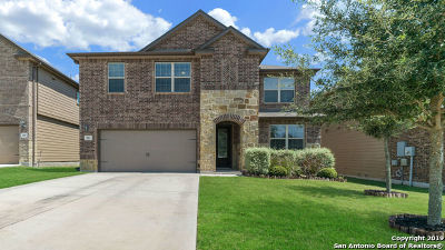 Cibolo Single Family Home For Sale: 221 Heritage View