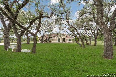 Kerrville Single Family Home For Sale: 170 Roadrunner Ln