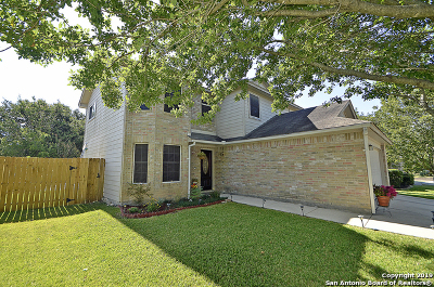 Boerne, Fair Oaks Ranch, Leon Springs Single Family Home Active Option: 115 Stone Creek Dr