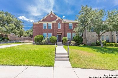 Promontory Pointe Single Family Home For Sale: 510 Wildberry Ct