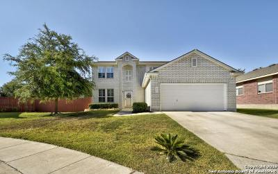 Single Family Home For Sale: 26111 Amber Sky