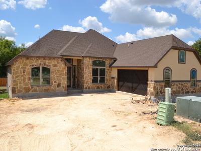 Medina County Single Family Home For Sale: 272 Strasbourg St
