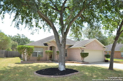 Cibolo Single Family Home For Sale: 229 Rio Vista Dr