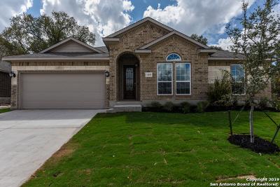Alamo Ranch Single Family Home For Sale: 14018 Rio Rancho