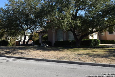 San Antonio Single Family Home For Sale: 20006 Messina