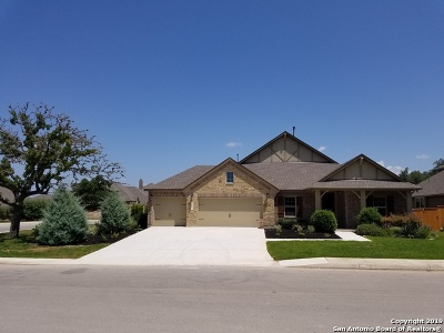 Boerne Single Family Home For Sale: 10007 Jeep Jump Lane