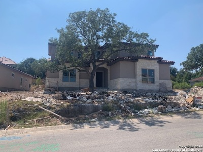 Stone Oak Single Family Home For Sale: 25038 Estancia Circle