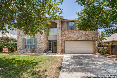 San Antonio Single Family Home For Sale: 1118 Tetford