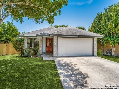New Braunfels Single Family Home Active Option: 2066 Bentwood Dr
