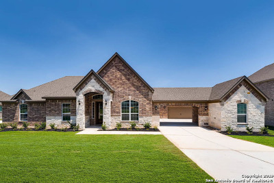 Castroville Single Family Home For Sale: 176 Texas Bend