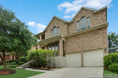 Single Family Home For Sale: 3539 Pinnacle Dr