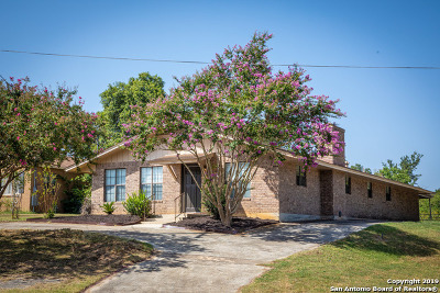 Floresville TX Single Family Home For Sale: $250,000