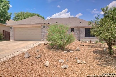 New Braunfels Single Family Home For Sale: 2213 Bentwood Dr