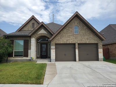 Seguin Single Family Home For Sale: 2130 Pioneer Pass