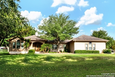 Guadalupe County Single Family Home Back on Market: 131 Wampum Way