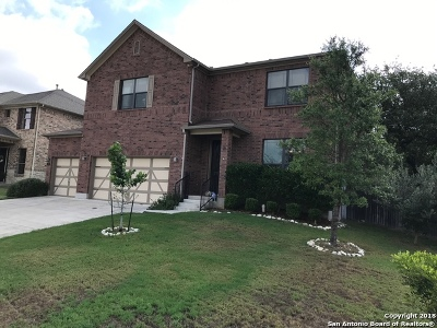 Boerne Single Family Home Active Option: 153 Rattlesnake Bluff