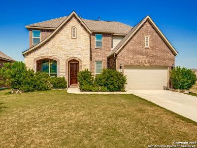 Boerne Single Family Home For Sale: 228 Parkview Terrace
