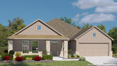 New Braunfels Single Family Home For Sale: 1935 Mallorca Way
