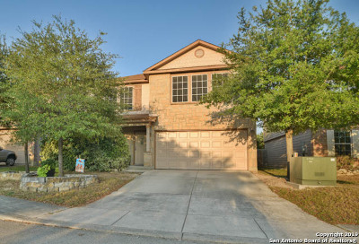 Boerne Single Family Home For Sale: 25802 Presidio Alley