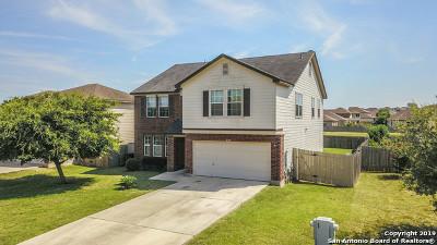 Kyle Single Family Home Active Option: 280 Mistletoe Ln