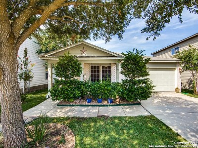 Cibolo Single Family Home Active Option: 417 Hinge Falls