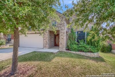 San Antonio Single Family Home For Sale: 24740 Buck Creek