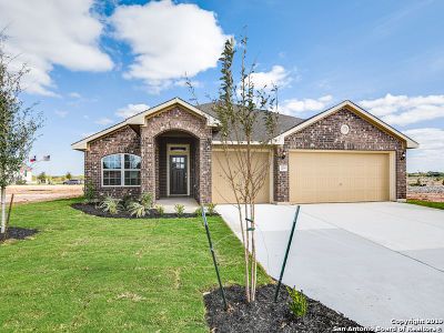 New Braunfels Single Family Home For Sale: 370 Nightshade Trail