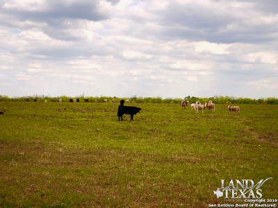 Atascosa County Residential Lots & Land For Sale: E Hwy 140