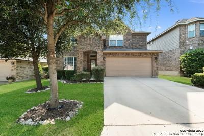 San Antonio Single Family Home Active Option: 25031 Mc Bride Dr
