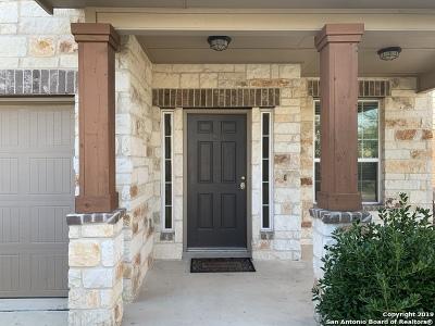 Alamo Ranch Single Family Home For Sale: 6743 Briscoe Mill