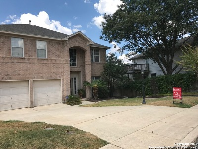 Stone Oak Single Family Home For Sale: 115 Nueva Vista