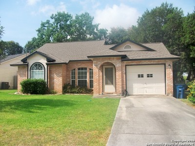 New Braunfels Single Family Home Active Option: 732 Vista Pkwy