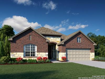 Fair Oaks Ranch Single Family Home New: 9010 Quail Gate