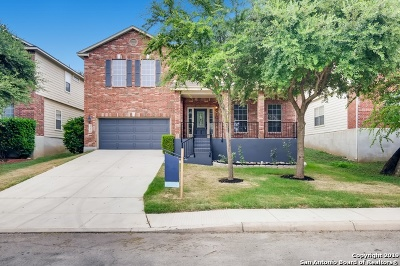 Helotes Single Family Home For Sale: 10806 Bramante Ln