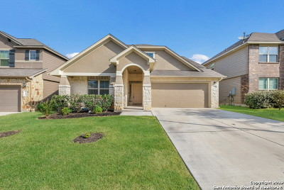 Cibolo Single Family Home New: 352 Morgan Run