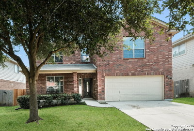 Helotes Single Family Home New: 8922 Firebaugh Dr
