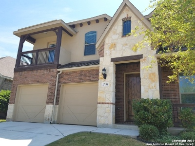 Boerne Single Family Home New: 27138 Smokey Chase