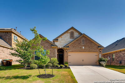 Helotes Single Family Home New: 10323 Rocamora
