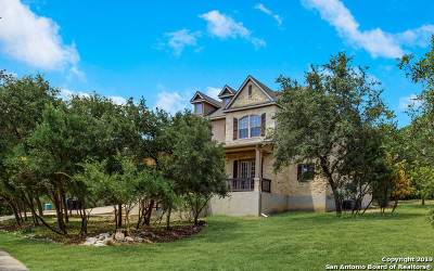 Helotes Single Family Home New: 17132 Bandera Rd