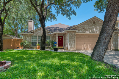 San Antonio Single Family Home New: 12403 Stable Wood