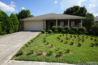 Helotes Single Family Home New: 9803 Sandie